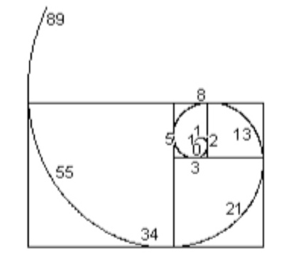 Fibonacci_curve