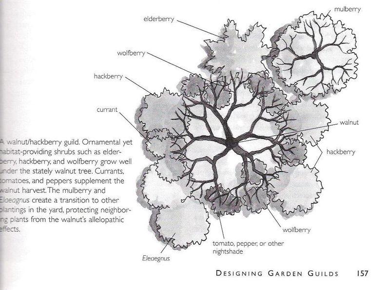 Gardenguild