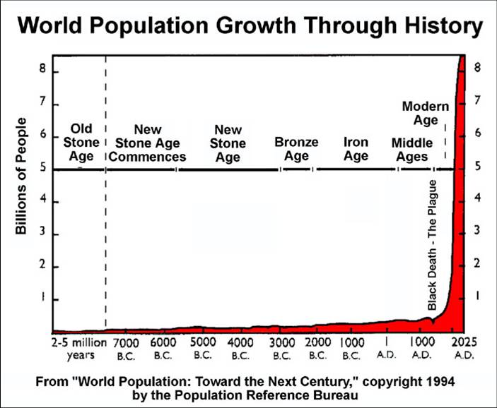 WorldPopulationGraph_yearPre7000BCto2025AD_metalAges_703x578