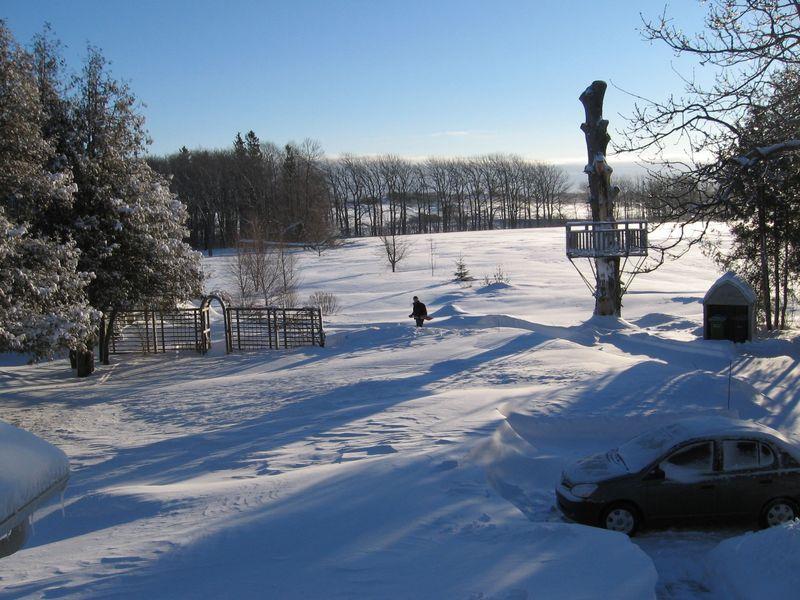 Rob snow Feb 9