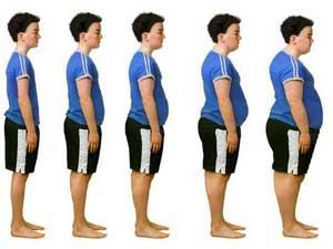 Obesity-evolution