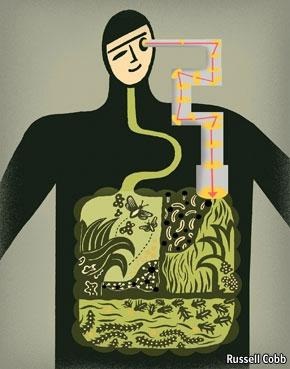 Humanecosystem