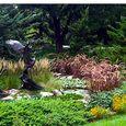 Emergence garden