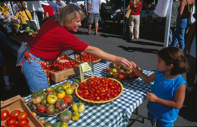 Farmers Market Tomatoes 1
