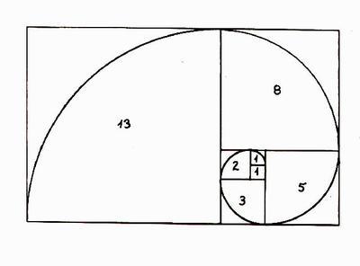 Fibonacci_curve_young