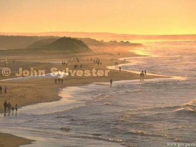 Beach_05