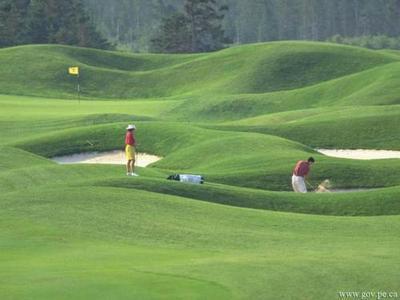 Golf_22