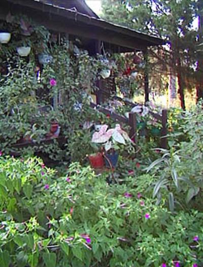 Garden_shed2